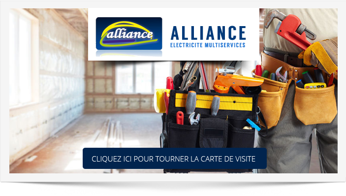 ALLIANCE ELECTRICITE MULTISERVICES